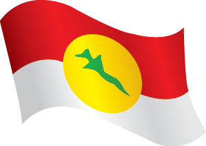 UMNO Flag (wave)